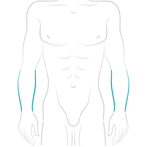 my-brazilian-wax-male-half-arms